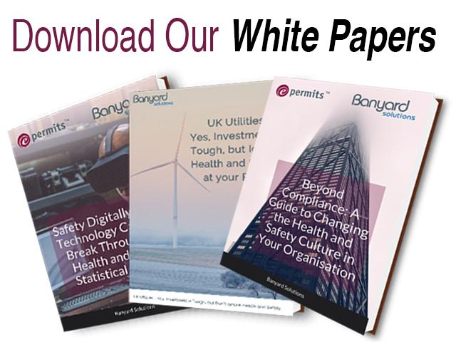 e-permits white papers