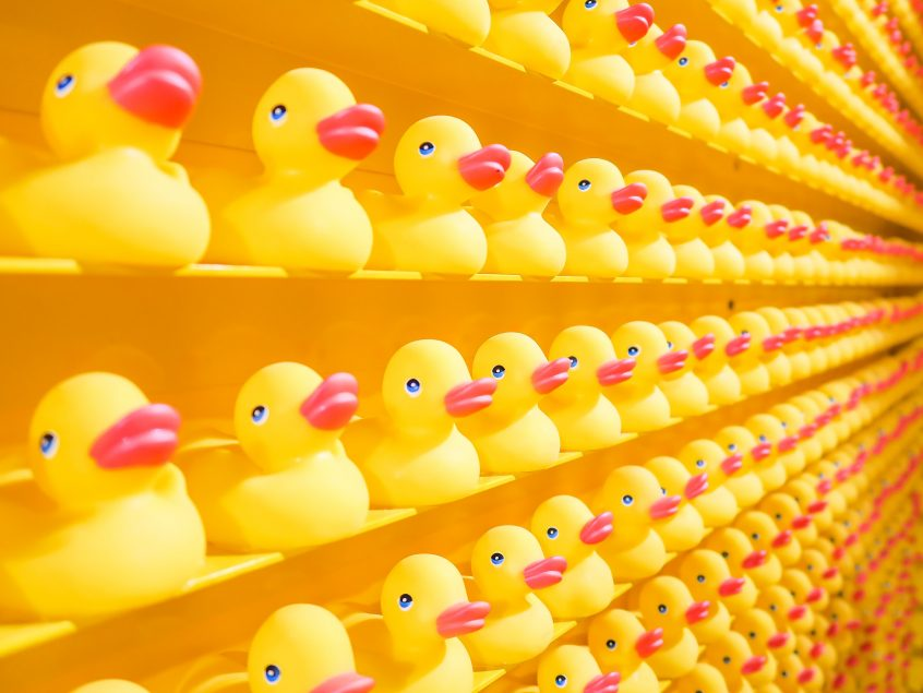 plastic ducks all in a line to illustrate Realigning Health and Safety in the Business