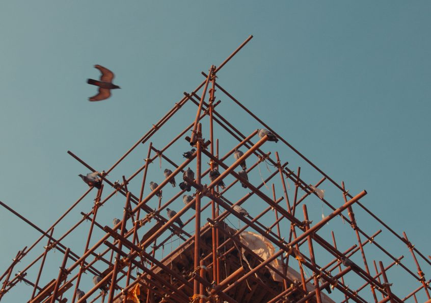 image of scaffold with bird flying by